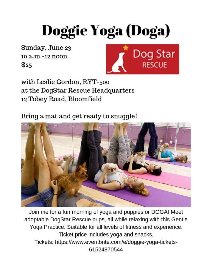 Doggie Yoga (Doga)